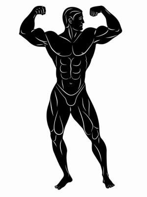 Väggdekor silhuetten av kroppsbyggare, vektorritning