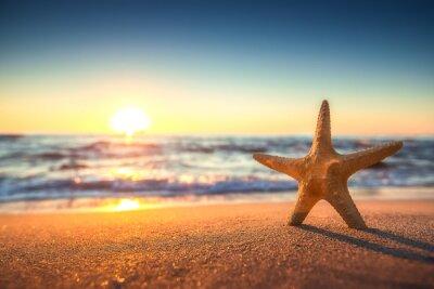 Väggdekor Sjöstjärna på stranden vid soluppgången