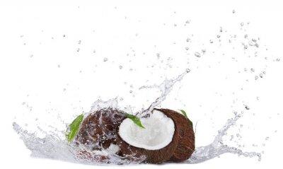 Väggdekor Skadade kokosnötter i vattenstänk på vitt
