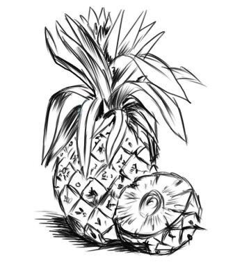 Väggdekor sketch till pineaple