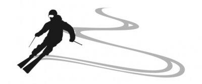 Väggdekor skifahrer