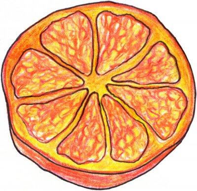 Väggdekor Skiss orange skiva handritad isolerade