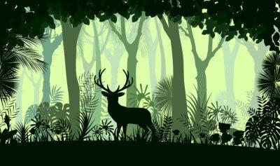 Väggdekor Skog bakgrund med vilda rådjur träd