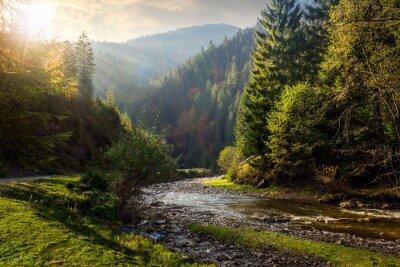 Väggdekor skogsälv i bergen