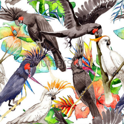 Väggdekor Sky fågelvita macaw papegojemönster i ett vildmark med vattenfärgsstil. Vildfrihet, fågel med flygande vingar. Aquarelle fågel för bakgrund, textur, mönster, ram, kant eller tatuering.