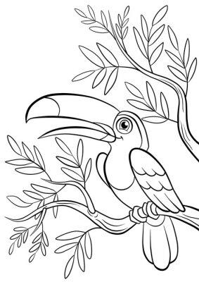 Väggdekor slag ler söt toucan i en skog