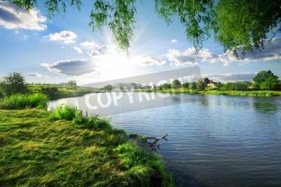 Väggdekor Solig dag på en lugn flod i sommar