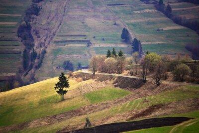Väggdekor Soliga våren i bergsby. Fält och kullar