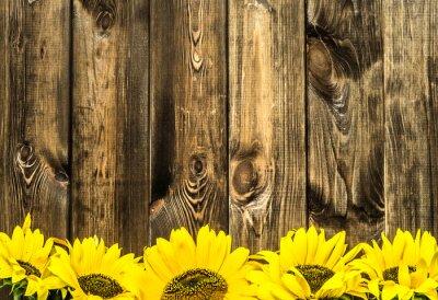 Väggdekor Solrosor på gamla träskivor. Blommor bakgrund med kopia utrymme