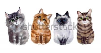 Väggdekor Söta roliga katter för vattenfärg på den vita bakgrunden