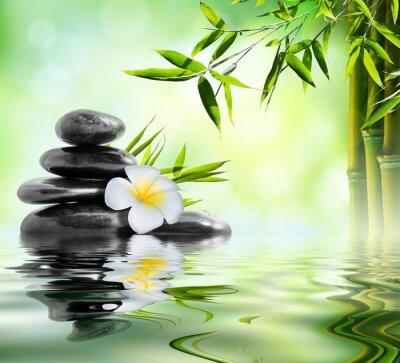 Väggdekor spa massagebehandling i trädgården med frangipani och bambu