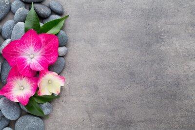Väggdekor Spa stenar och blommor, på grå bakgrund.