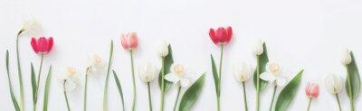 Väggdekor spring flowers on white background