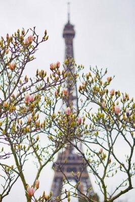 Väggdekor Spring i Paris