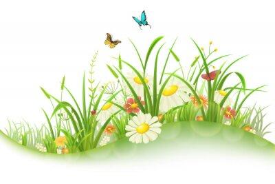 Väggdekor Spring sommaräng med grönt gräs, blommor och fjärilar