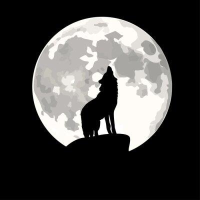 Väggdekor Square illustration av varg ylande på månen.