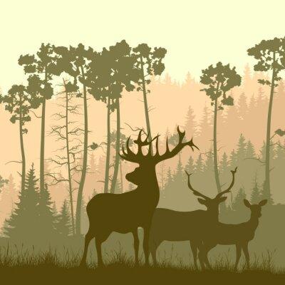 Väggdekor Square illustration av vilda älg på kanten av skogen.