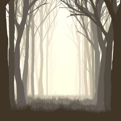 Väggdekor Square illustration glänta i skogen.