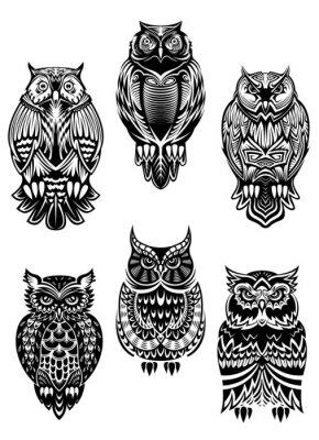 Väggdekor Stam- owl fåglar inställd