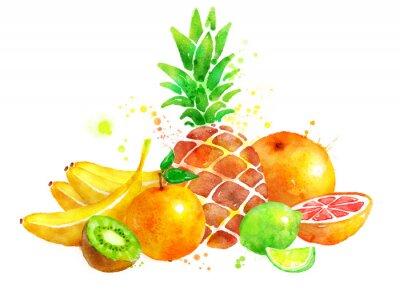 Väggdekor Stilleben med frukt.