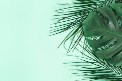 Väggdekor Summer composition. Palm leaves on mint background. Summer concept. Flat lay, top view, copy space