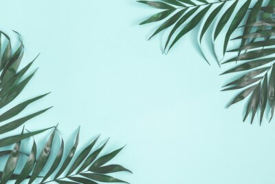 Väggdekor Summer composition. Palm leaves on pastel blue background. Summer concept. Flat lay, top view, copy space