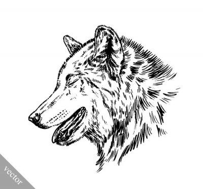 Väggdekor svart och vitt gravera isolerad wolf