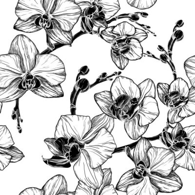 Väggdekor svart och vitt sömlösa mönster med orkidé blommor