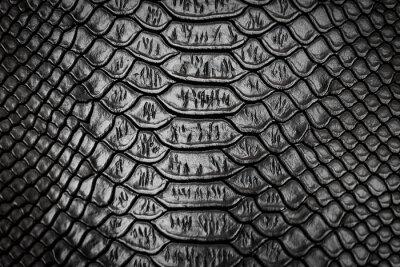 Väggdekor Svart ormhudmönsterstruktur