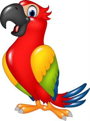 Väggdekor Tecknad rolig papegoja isolerade på vit bakgrund