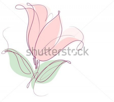 Väggdekor Teckning vektorgrafik med blommönster med tulpaner för design. Blomblomma naturlig design. Grafisk, skissritning. tulpan.