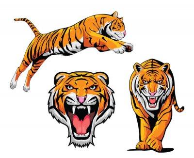 Väggdekor Tiger illustration Set