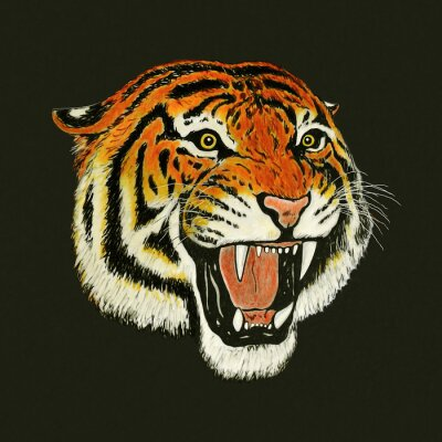 Väggdekor tiger ryta ritning