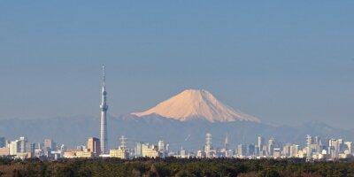 Väggdekor Tokyo utsikt över staden med Tokyo Sky Tree och berg Fuji