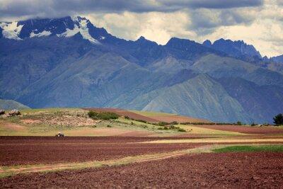 Väggdekor Traktor på fältet, Cuzco, Peru