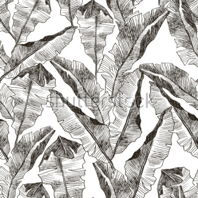 Väggdekor Tropic plants floral seamless jungle pattern. Print vector background of fashion summer wallpaper palm banana leaves in black and white gray style