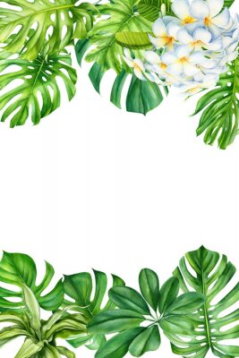 Väggdekor tropical leaves and flowers on an isolated background, greeting cards with space for text, watercolor painting, botanical illustration, floral design, plumeria, palms, monstera