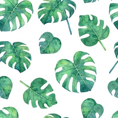 Väggdekor Tropical  seamless pattern with monstera leaves. Hand painted in watercolor.