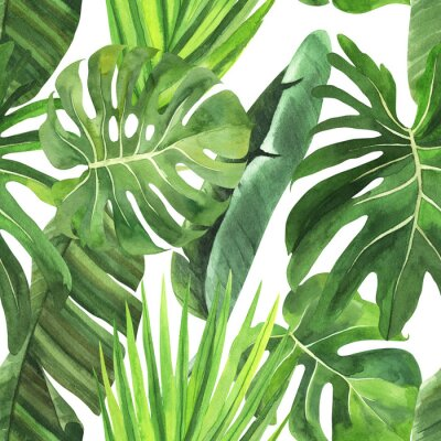 Väggdekor  Tropical seamless pattern with tropical leaves, palm banana monstera on an isolated white background, watercolor jungle drawing, stock illustration.