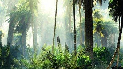 Väggdekor Tropisk djungel i dimma. Palmer på morgonen.
