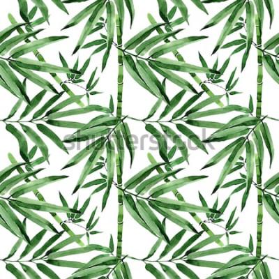 Väggdekor Tropiska blad bambusträdmönster i akvarell stil. Aquarelle vilda blad för bakgrund, textur, omslagsmönster, ram eller gräns.