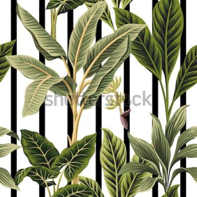 Väggdekor Tropiska tappningpalmträd, sömlösa mönster för svart och vitt band för bananträd. Exotiska botaniska djungel tapeter.
