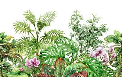 Väggdekor Tropiska växter linje sömlösa mönster