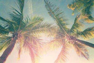 Väggdekor Tropiskt landskap med palmer och solig himmel
