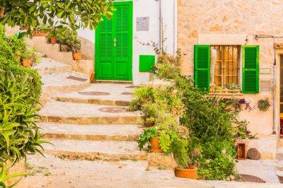 Väggdekor Typiska växt dekoration på en gammal lantlig Mediterranean Village