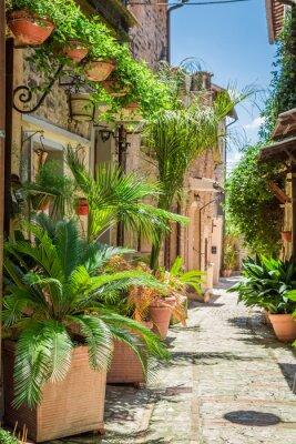 Väggdekor Underbart inredda gata i liten stad i Italien, Umbrien