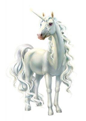 Väggdekor unicorn, full-length isolated on white