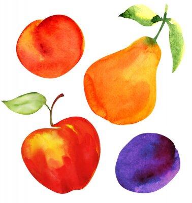 Väggdekor Uppsättning av frukt. Äpple, päron, plommon och aprikos.
