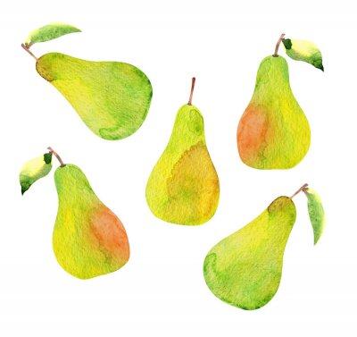 Väggdekor uppsättning av päron isolerad, vattenfärg