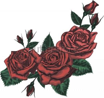 Väggdekor Vacker bukett med röda rosor. Realistisk vektorkonst - röda rosor på vit bakgrund. - Designelement för gratulationskort
